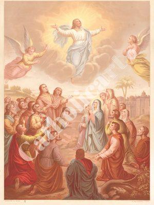 [CAT08] CREDO est monté aux Cieux (Catéchisme en images 1893)