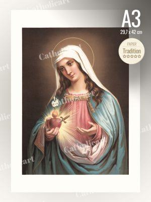 Coeur Immaculé de Marie (A3)